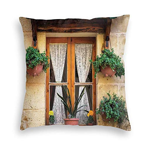 FULIYA Zippered Velvet Pillowcases,Basket of Flowers Historic Building Window with Classic Lace Curtain Inside Image,Super Soft and Cozy Luxury Pillow Cases 20X20 Inches