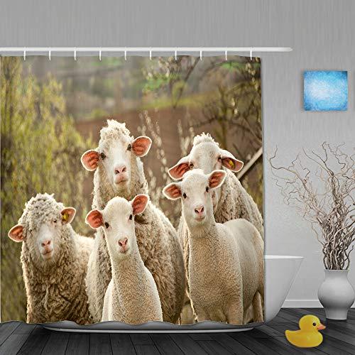 MANISENG Duschvorhang,Schafe innerhalb eines Pöbels drehen Sich um,um den Fotografen zu überprüfen,personalisierte Deko Badezimmer Vorhang,mit Haken,180 * 180