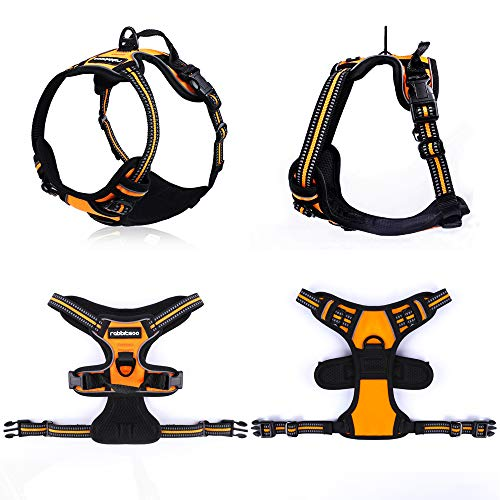"""rabbitgoo Dog Harness, No-Pull Pet Harness with 2 Leash Clips, Adjustable Soft Padded Dog Vest, Reflective No-Choke Pet Oxford Vest w/Easy Control Handle for Large Breeds, Orange (L, Chest 20.5-36"""")"""
