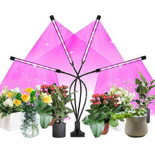 Pflanzenlampe LED, Pflanzenlicht mit Automatische Zeitschaltuhr,4 Heads 80 LEDs Wachsen licht,Vollspektrum Wachstumslampe für Zimmerpflanzen, 3 Arten von Modus 3H 9H 12H, 10 Arten von Helligkeit
