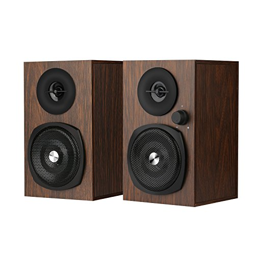 INSMART Computer Speakers, Speaker for Desktop Computer, 3.5mm Audio Interface and USB Powered PC Speaker, 10W Wooden Stereo Computer Speaker with Volume Control (P100)