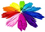 Bastex Colorful Assorted Goose Craft Feathers 350 pcs. 10 Different Colors, 4 to 6 inches in Length. Great for Decorative Arts and Crafts, Classrooms, Dreamcatcher and Party Decorations.