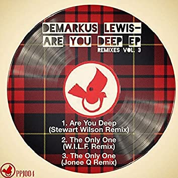 Are You Deep EP Remixes, Vol. 3
