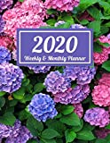 "2020 Weekly & Monthly Planner: Pink and Purple Hydrangeas Dated Weekly Planner | Time Management | Increase Productivity | Weekly Agenda | 8.5"" x 11"" Organizer & Diary 