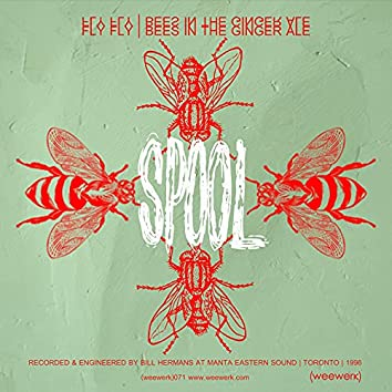 Fly Fly / Bees in the Gingerale