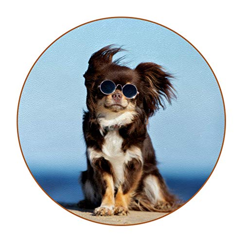 Coasters for Drinks Animal Sunglasses Dog Set of 6 Coasters, Microfiber leather, Protect Against Water Marks or Damage - Fit All Cups, 3.4' Size Fits, Colored Coasters