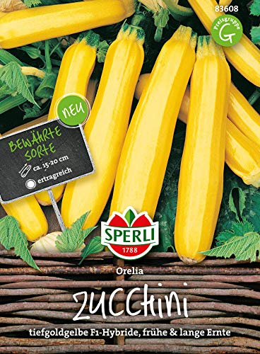 83608 Sperli Premium Zucchini Samen Orelia | Früh | Lange Ernte | Gelbe Zucchini | Zuchini Saatgut | Zucchini Gelb