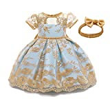 TTYAOVO Baby Girls Lace Embroidered Backless Princess Birthday Party Dress Size (90) 12-24 Months Yellow