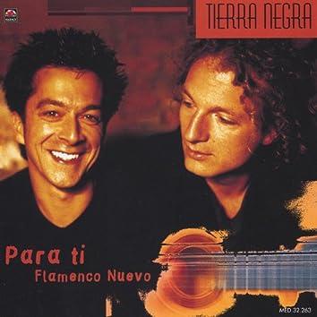 Para Ti - Flamenco Nuevo