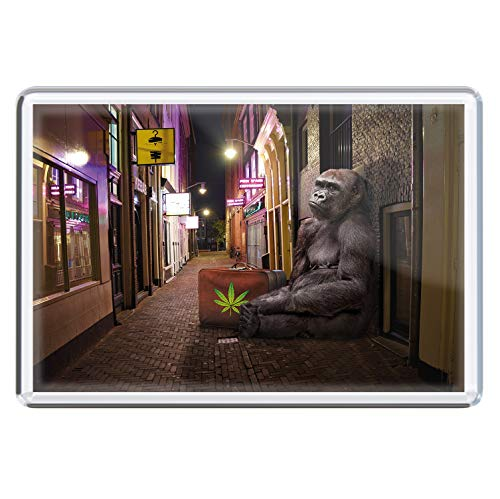 stadtecken magneten 10x7cm +++ Amsterdam motieven: Traveller I Holland Nederland | koelkastmagneten I Leven & Momenten grappig I Whiteboard I Souvenir I Gift I Geschenkidee