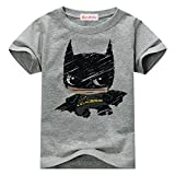 Sun Baby TBoy Toddler T-Shirt Graphic Short Sleeve, 2-3 Years, Gray