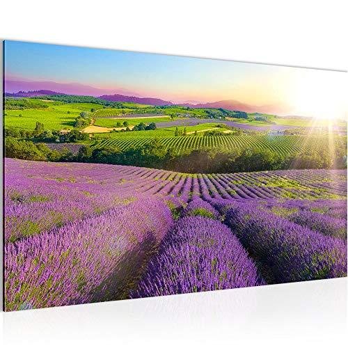Bild Provance Landschaft Modern Wandbilder - 100{bef905972510f430519c96428e46bfc3271c35f7d98278cc2cebe820fe14259d} Made In Germany - Lavendel Natur Lila Flur 610714b