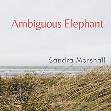 Ambiguous Elephant