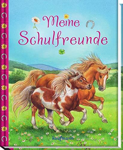 Meine Schulfreunde (Freundebuch für die Schule / Meine Schulfreunde für Mädchen und Jungen)