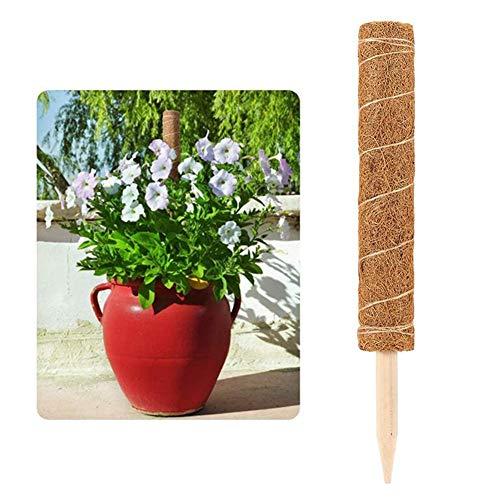 EZIZB Poteaux De Noix De Coco Support Tuteurs Plantes Grimpantes De Soutien Pieu Totem De Coco pour Plantes Grimpantes Lianes De Vignes