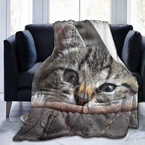 Lawenp Manta de Tiro para Gato, Gatito, Mascota, Ojos Bonitos, Encantador, Ultra Suave, Manta de Microfibra, cálida y Suave, Manta de sofá para Cama, sofá, Sala de Estar