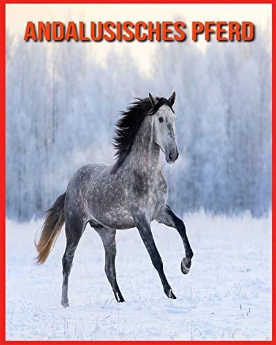 Andalusisches Pferd: Kinderbuch Erstaunliche Fakten & Bilder über Andalusisches Pferd