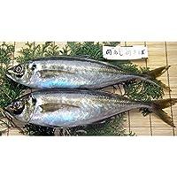 大分県漁業協同組合 佐賀関支店 関あじりゅうきゅう 4袋