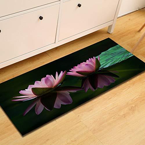 WESG Alfombrillas Impresas Lavables en Cocina, felpudos en salón y Dormitorio, alfombras absorbentes en baño N ° 2 50X160cm