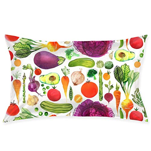LESLIEYU Ultra-Soft Pillow Protectors Cases Covers, Colorful Vegetables Painting Rectangle Sofa Pillowcases Shams with Zippered, Waist Cushion Throw Pillow Cover for Couch Bed Bedroom Chair (20 x 30)