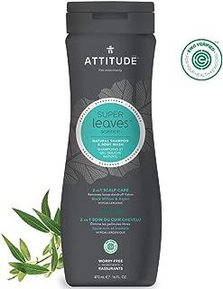 ATTITUDE Super Leaves, Hypoallergenic 2 in 1  Shampoo & Body Wash, Black Willow & Aspen, 16 Fluid Ounce