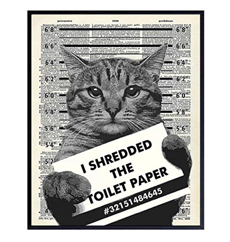 Guilty Cat Wall Decor - Cat Wall Art - Dictionary Art - 8x10 Humorous Poster, Mugshot Wall Art or Home Decoration for Bathroom, Bath - Funny Gag Gift for Cat Lovers - Upcycled Picture Photo Print
