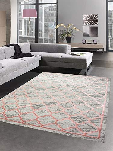 CARPETIA Tapis de Salon avec Motif marocain Gris Rose Größe 160x230 cm