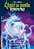 Horrorland, Tome 13 : Les hurlements du chien fantôme (French Edition)