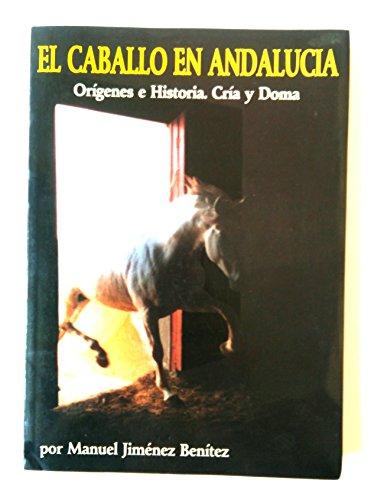 CABALLO EN ANDALUCIA