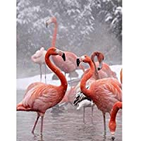 JXRDG 5D Diamond Painting Flamingo Full Drill DIY for Home Wall Decor Craft 40*30cm no frame
