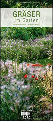 Gräser im Garten 2020 – DUMONT Wandkalender – Garten-Kalender – Hochformat 30,0 x 68,5 cm