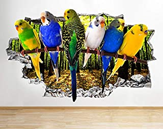 Periquitos Australianos Cotorras Aves Autoadhesivo Removible Calcomania Pegatina de Pared Sticker Vinil Autocolante Decorativo P243 (Pequeño: 50 cm x 30 cm)