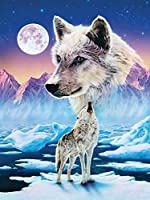 DIY 5Dダイヤモンド絵画フルスクエアドリルキットラインストーン初心者大人ピクチャーアートクラフト家の壁の装飾(16x20inch / 40x50cm)狼