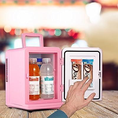 6L Portable Mini Car Refrigerator Cooler & Warmer
