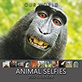 Our World Animal Selfies 2022 Wall Calendar - UK Christmas Gift Stocking Filler. Funny Animal Photography Monthly Planner. Large Hanging Grid Organiser for Office, Family & Kitchen
