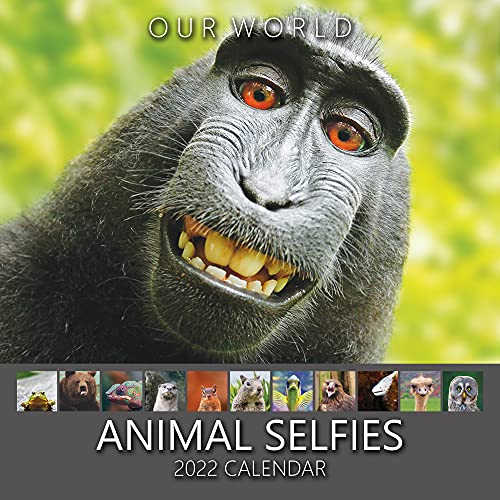 Our World Animal Selfies 2022 Wall Calendar – UK Christmas Gift Stocking Filler. Funny Animal Photography Monthly Planner. Large Hanging Grid Organiser for Office, Family & Kitchen