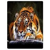 YISUMEI Decke 150x200 cm Kuscheldecken Sanft Flanell Weich Fleecedecke Tagesdecke Tiger kniend