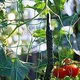 Red De Enrejado De Plantas, Red de Enrejado de Nylon para Plantas...