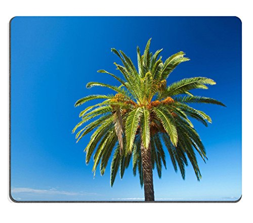 Luxlady Gaming Mousepad foto ID: 31600481 fondo naturale Phoenix Data canariensis canarian palmo e lontane oceano