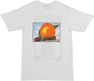 Allman Brothers Band white T-shirt distressed 'Eat A Peach' summer '73 tee- White, Large