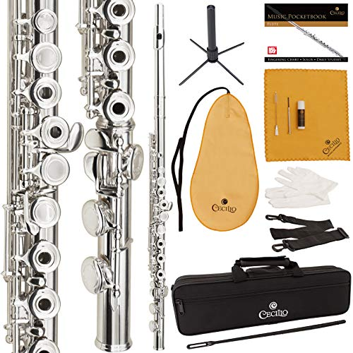 Cecilio High Grade Student Open Hole C Flute Package with Case, Stand, Pocketbook, Cleaning Rod, Cleaning Cloth, Joint Grease, Mouthpiece Brush, Gloves, Screwdriver and 1 Year Warranty(Silver Nickel P