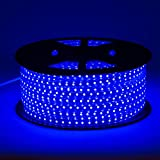 Lumilum LED Strip Lights – Professional 120V Outdoor Waterproof Dimmable – 164 Feet (Blue)