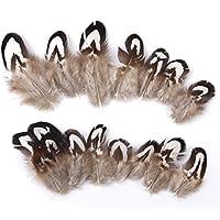 【ノーブランド品】約50pcs ルースターコック 装飾用の羽根 雉の羽根 工芸品 羽飾り ヘアアクセサリー