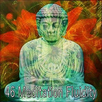 46 Meditation Fluidity