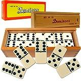 X6 domino set