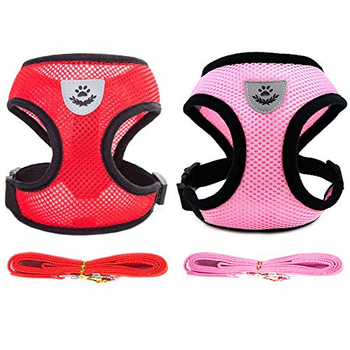 2 Pack Dog Leash Vest Harness Set for Small Medium Dogs Kitten Harness and Leash for Walking Soft Mesh Comfort Fit No Pull No Choke (Girl, S)