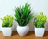 Artificial Plants Bonsai Faux Grass Decorations With Plastic Pot (Green;White, 3 Pieces)