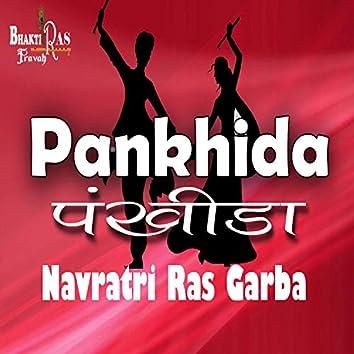 Pankhida Navratri Raas Garba