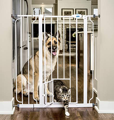 dog gates with cat door