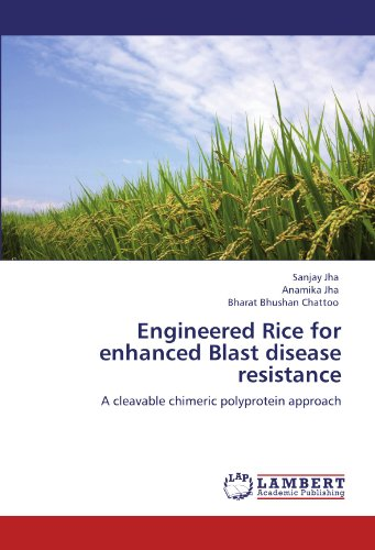 Engineered Rice for enhanced Blast disease resistance: A cleavable chimeric polyprotein approach
